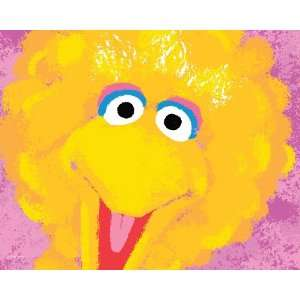 Street, Closeup, Big Bird , 16 x 20 Poster Print